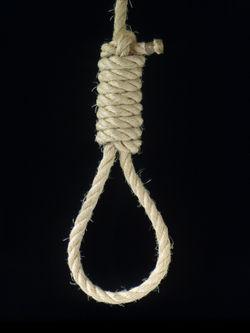 250px-Knot-hangmans-noose.jpg